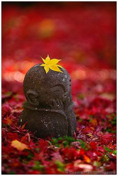 Autumn in children Jizo at Enko-ji Temple, Kyoto