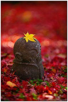 Autumn in children Jizo at Enko-ji Temple, Kyoto, Japan LYNN we have got to find Jizo statues for our gardens :):) xoxoxox