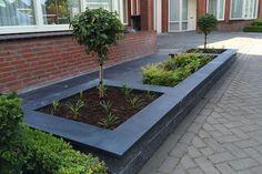 House Front, Gardening Tips, Sidewalk, Landscape, Green, Plants, Image, Fingers, Google