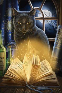 Lisa Parker art - cat artist and gallery magical cat artworks, wolves, dragons, unicorns and more. Halloween Pictures, Halloween Cat, Canvas Art Prints, Canvas Wall Art, Deco Zen, Magic Cat, Frida Art, Black Cat Art, Black Cats