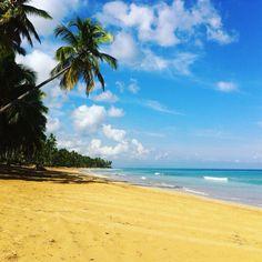 Vamos a la playa!!! Mountacala prend des vacances sous le soleil des Caraïbes.