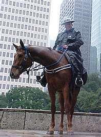 Police horse, Shadow, a 4 yo Dutch Warmblood