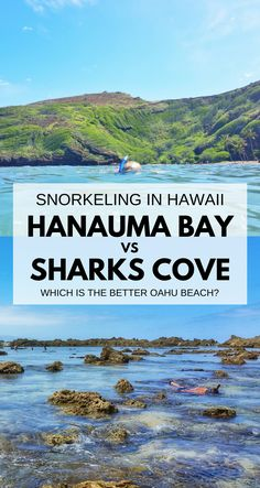 Best beaches and spots for snorkeling in Oahu Hawaii include Hanauma Bay and Shark's Cove on North Shore. For US beaches in Hawaii, swimming and snorkeling activities with turtles and fish! Best Oahu beaches give you things to do in Oahu near hiking trails, food, shopping. USA travel destinations for bucket list world adventures when on a budget with Hawaii vacation ideas! Day trip itinerary away from Waikiki and Honolulu! Add snorkeling gear to Hawaii packing list, what to wear in Hawaii.