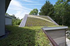Galeria - Residência & Jardins Suspensos Sayres / Maziar Behrooz Architecture - 41
