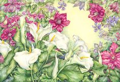 Carole Andrews - Botanical Artist - Watercolourist, Painter, Society of Botanical Artists, Flowers, Plants, Flora, Botany, Watercolour, Wate...