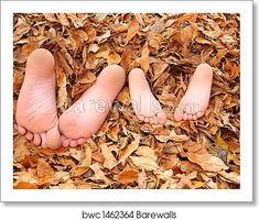 Kids buried in fall leaves. Two young brothers are buried in fall leaves with on , Fall Leaves Pictures, Fall Pictures, Canvas Pictures, Flip Image, Fall Family Photos, Children Images, Modern Art Prints, Leaf Art, Famous Artists
