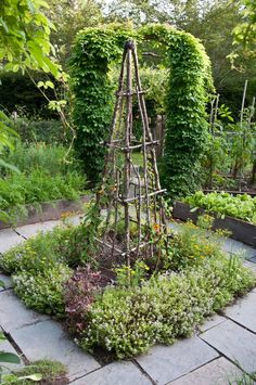 Trellis with herbs in the center of a Potager - Vegetable garden.