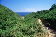 Sark Island coastal walk, the island has a coastline of over 30 miles with the occasional pub along the way, making it a pretty pleasant walking destination