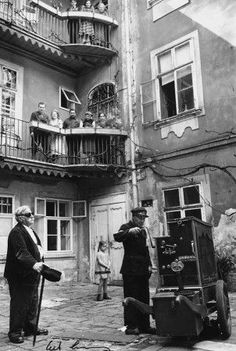by Erich Lessing, Wien 1954 Street Musician, Vienna Austria, Life Is Hard, Magnum Photos, Hungary, Paris, Black And White, History, Storyboard