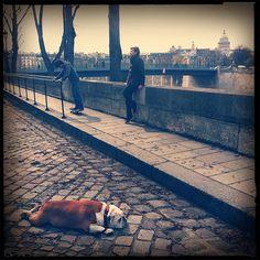 Ile Saint-Louis * Paris