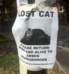 Flyer for Schrodinger's missing cat...