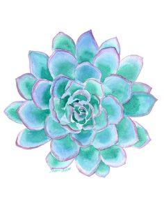 Teal Succulent watercolor giclée reproduction. Portrait/vertical orientation. Printed on fine art paper using archival pigment inks. This quality printing allows over 100 years of vivid color in a ty