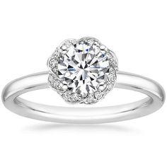 18K White Gold Corinna Diamond Ring, top view