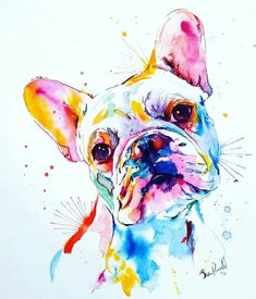 frenchieart frenchbulldogart frenchbulldog frenchie is part of pencil-drawings - pencil-drawings Watercolor Animals, Watercolor Art, Boston Terrier Art, Tableau Pop Art, Paint Your Pet, French Bulldog Art, Colorful Animals, Arte Pop, Animal Paintings