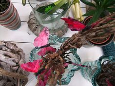 Get inspired! Take a look at our Tropical Times home deco products!