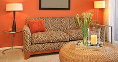 Orange © Neil Podoll/Shutterstock.com