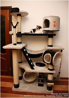 Игровые комплексы для котов своими руками