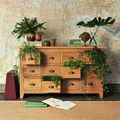 Oakland Multi Drawer Sideboard (C286) with Free Delivery | The Cotswold Company. Country Furniture, Country Home, Country Style, Oak Furniture, Furniture Dressing, House Plants, Large Chest, Oak Chest, Furniture Styling, Map Wallpaper.