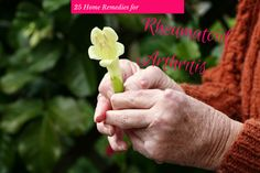 Natural Remedies for Arthritis Knee Pain -- Check out the image by visiting the link.