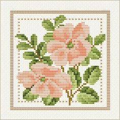 Project 2010 - Flower of the Month Motif 06 for June: Wild Rose by Ellen Maurer-Stoh free pattern on Ellen Maurer-Stoh at http://www.maurer-stroh.com/EMS2010_June_06.html