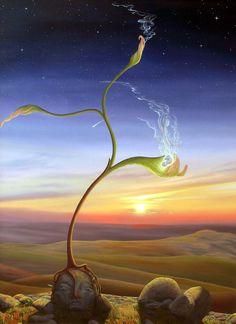 Germination - Seeding by Manon Potvin
