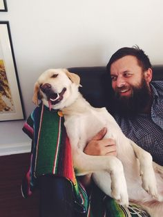 Fox in total chill mode with his dad Travis. #dog #pet #bestfriends | Nicole Mlakar | VSCO Grid