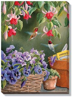 http://www.wildlifeprints.com/collections/bourdet-susan/products/susan-bourdet-garden-delights-hummingbirds-13-x18 Tole Painting, China Painting, Wildlife Art, Watercolor Bird, Watercolor Paintings, Hummingbird Art, Hummingbirds, Realistic Oil Painting, Flower Art