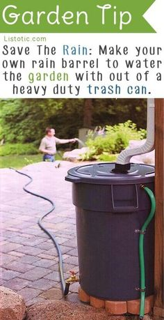 Make your own rain barrel to store gutter water