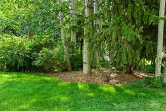 Learn how to quickly fix the most common lawn problems.