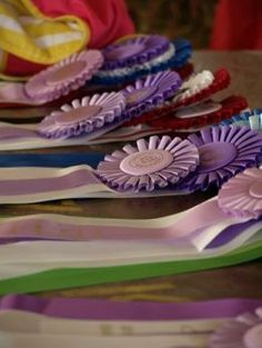 county fair ribbons. I think I got one of these during my yrs in 4-H. My boys received many more with gardening and their Labrador dogs.