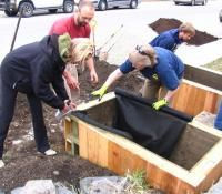 From the Bottom Up – A DIY Guide to Wicking Beds - The Permaculture Research Institute Wicking Beds, Building Raised Beds, Raised Bed Garden Design, Container Gardening, Balcony Gardening, Garden Pool, Growing Greens, Permaculture Design, Self Watering Planter