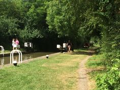 A summers day at the Buckby Flight on the Grand Union Canal