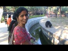 Bear Hungama in Hyderabad Zoo Park Tourist Places TOURIST PLACES : PHOTO / CONTENTS  FROM  IN.PINTEREST.COM #TRAVEL #EDUCRATSWEB