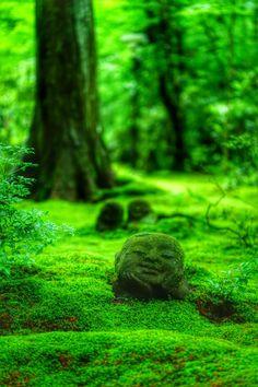 三千院わらべ地蔵 Sanzen-in Temple #Kyoto #Green #緑