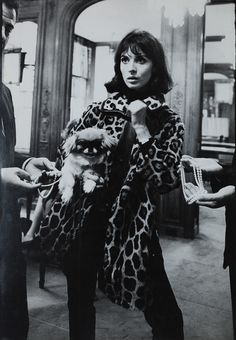 Jewelry Shopping in her leopard print coat with her Pekingese...?  I think I've come across a picture of me in one of my past lives.