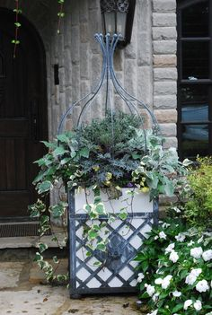 kale, dusty miller, and ivy~wonderful for fall/winter