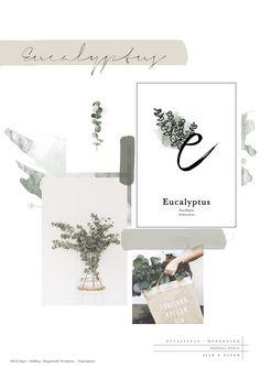 © Silk&Paper - Eucalyptus - Alphabet Flower -