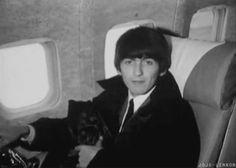 George Harrison Cute - Bing Images