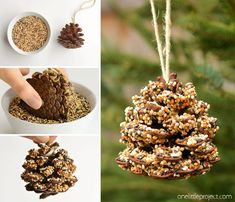These pinecone bird feeders are SO PRETTY and they're so easy to make! With just a few simple supplies you can make one in less than 10 minutes! Bird Seed Feeders, Pine Cone Bird Feeder, Bird Feeder Craft, Bird Suet, Diy Crafts For Kids, Projects For Kids, Fun Crafts, Pine Cone Crafts For Kids, Art Projects