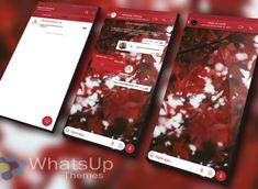 TEMA YOWHATSAPP – LEAF RED Whatsapp Apk, Whatsapp Plus, Material Design, Tema Iphone, Leaves, Website, Red, Hipster Stuff