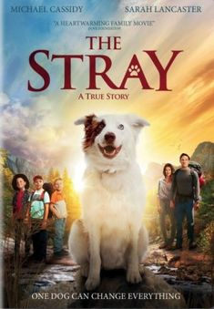A charming true story of a dog, a family, and an adventure of prayer answered. The Stray is the perfect film for dog-loving families.