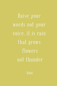Everytime we talk I promise I will never raise my voice...sometimes when my mom is upset and raises her voice I just don't say anything or talk normal..I never raise my voice..I know monkey won't ever raise her voice either ☺️
