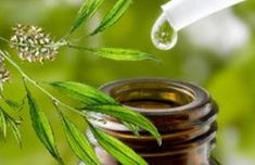 Natural Scar Remedies - Tea Tree Oil Psoriasis - Remedies # Natural - Elizabeth B. Scar Remedies, Herbal Remedies, Psoriasis Remedies, Psoriasis Symptoms, Dandruff Remedy, Psoriasis Cure, How To Cure Dandruff, Pimples On Chin, Tea Tree Oil For Acne