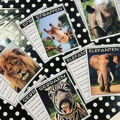 Nytt Faktalese-sett om dyr på savannen!🤗🦁🐘🦒🦓 5 tekster med 3 lesenivåer gjør det enkelt å differensiere! Oppgaver som sjekker leseforståelse følger med til hver tekst!😄 Jobber dere mest på nettbrett? Fortvil ikke, det følger med bildefiler av tekst og oppgaver slik at man kan legge dem inn i apper og elevene kan bruke dem også hjemme!  Se video på Facebook-siden til Teaching FUNtastic!🤩 Faktalese-settet kommer også snart på dansk🇩🇰 og svensk!🇸🇪 Dere, Playing Cards, Teaching, Personalized Items, Instagram, Norway, Playing Card Games, Education, Game Cards