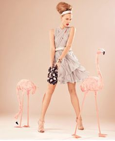 The Fab Miss B: Fabulous Flamingos!