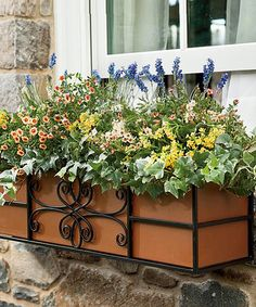 This 24'' Copper-Lined Quatrefoil Window Box is perfect! #zulilyfinds