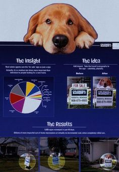 SIGN BOARD, Coldwell Banker Real Estate, Coldwell Banker, Print, Outdoor, Ads
