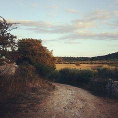 Un giorno al tramonto in #valleditria  Benvenuti in Puglia! www.diariodipuglia.com