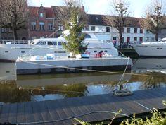 De kerstboom op het water.