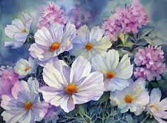 "art by anne mortimer | Cosmos and Phlox"" by Ann Mortimer 